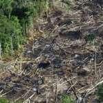 Noruega bloqueia doações para o Fundo Amazônia